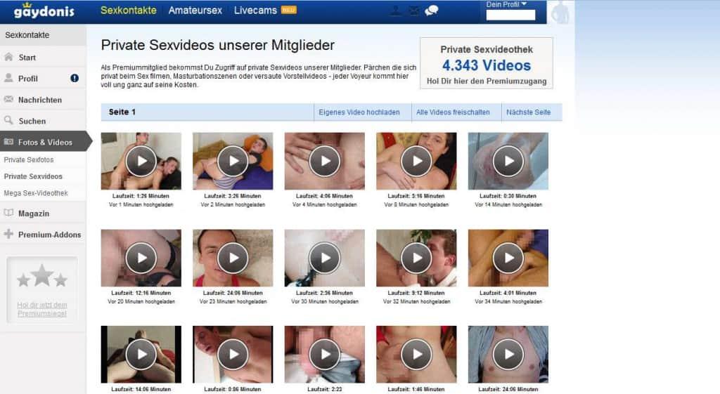 13-gaydonis-Seite-Fotos-und-Videos