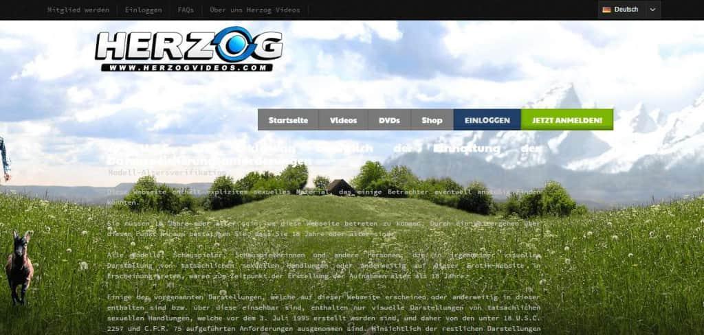 Herzogvideos.com 18 USC